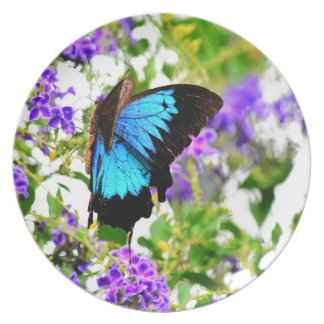 ULYSSES BUTTERFLY QUEENSLAND AUSTRALIA PLATE