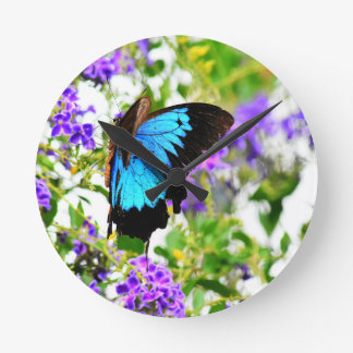 ULYSSES BUTTERFLY QUEENSLAND AUSTRALIA ROUND CLOCK