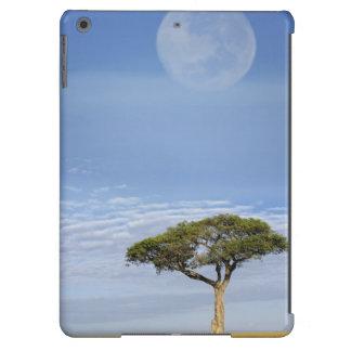 Umbrella Thorn Acacia, Acacia tortilis, and Cover For iPad Air