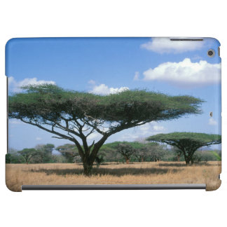 Umbrella Thorn Acacia (Acacia tortilis), Mkuze iPad Air Cover