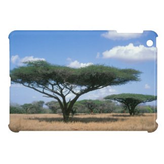 Umbrella Thorn Acacia (Acacia tortilis), Mkuze iPad Mini Cover