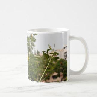 Un beau tournesol se levant haut mug