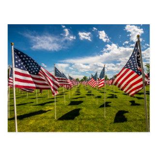 Un champ des drapeaux américains sur le souvenir cartes postales