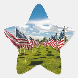 Un champ des drapeaux américains sur le souvenir sticker étoile