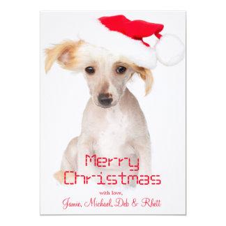 Un chien crêté chinois chauve carton d'invitation  12,7 cm x 17,78 cm