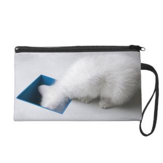 Un jeune chaton étire sa tête en bas d'un carré pochettes avec dragonne