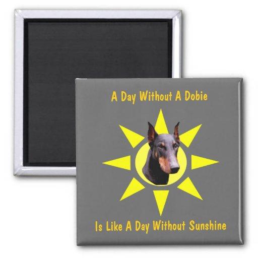 Un jour sans aimant drôle de chien de dobermann de