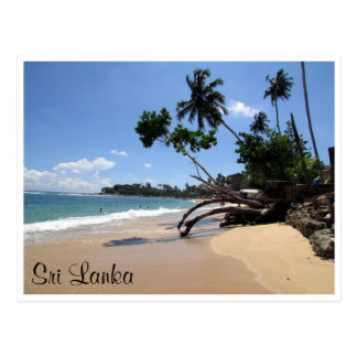 unawatuna beach tree postcard
