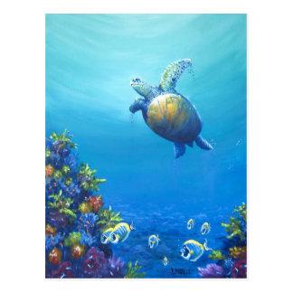 Under Sea Life Postcard
