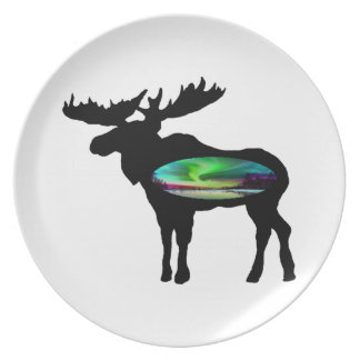 UNDER THE AURORA PARTY PLATE
