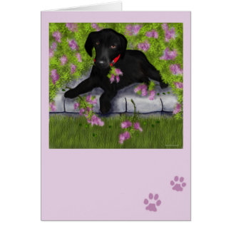 Under the Lilacs Card
