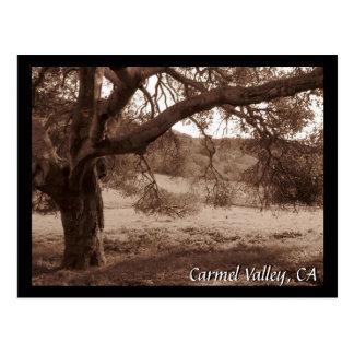 Under the Oaks Postcard