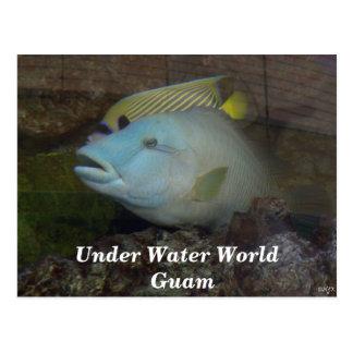 Under Water World Guam Postcard