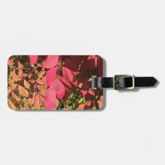 Underexposed Luggage Tag
