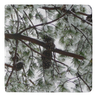 Underneath the Snow Covered Pine Tree Winter Photo Trivet