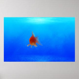 Undersea Aquatic Poster