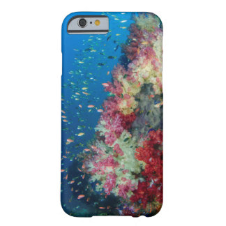 Underwater coral reef, Indonesia Barely There iPhone 6 Case