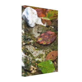 Underwater leaves canvas print