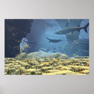 underwater life Print