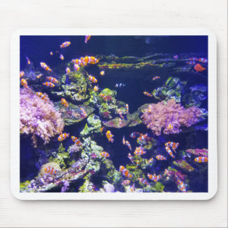 Underwater Orange Clown Fish Around Coral Mouse Pad