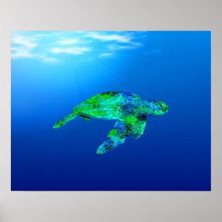 Underwater Sea Turtle Posters