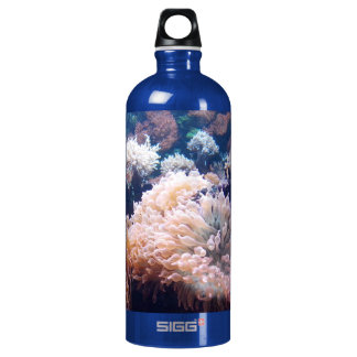 Underwater Underwater SIGG water bottle