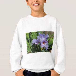 Unexpected Second Chances Sweatshirt