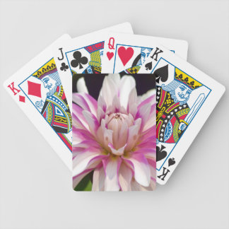 Unfolding Bicycle Playing Cards