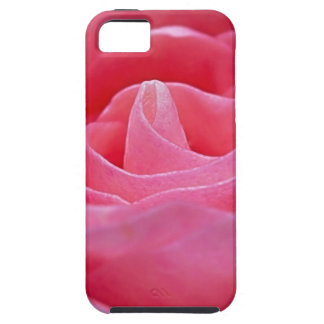 Unfurling Pink Rose iPhone 5 Covers