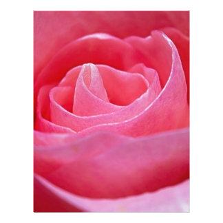 Unfurling Pink Rose Letterhead