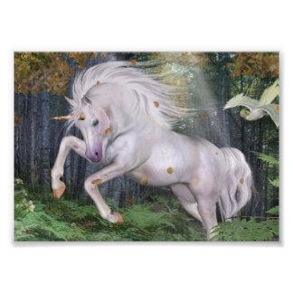 Unicorn Forest Stars Cristal Blue Photo