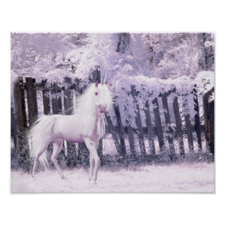 Unicorn in infrared photo background poster