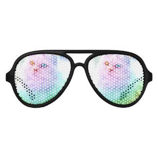 Unicorn Rainbow Cat Aviator Sunglasses