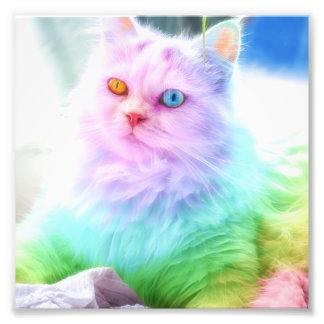 Unicorn Rainbow Cat Photo Print