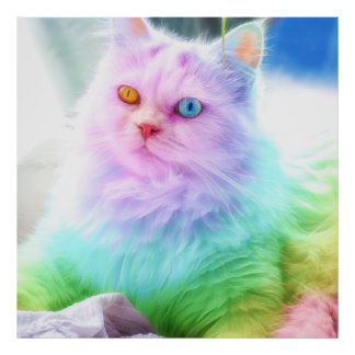 Unicorn Rainbow Cat Poster