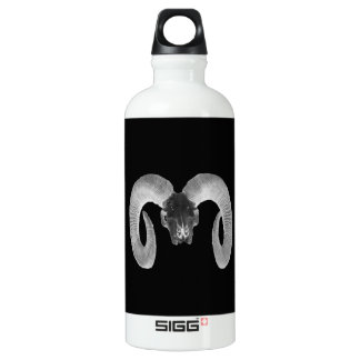 unique and handmade  goat skull water bottle
