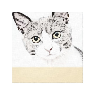 Unique Cat canvas print