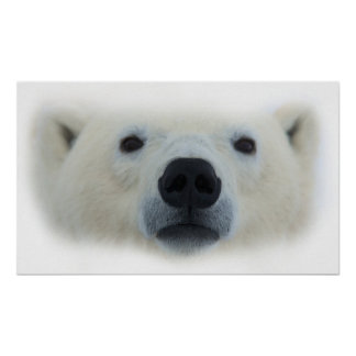 Unique Chic Polar Bear Artwork Poster Print