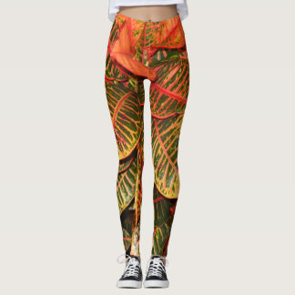 Unique get into nature as you exercise, or enjoy leggings