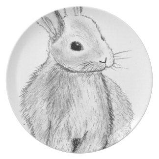 Unique Hand Drawn Bunny Plate