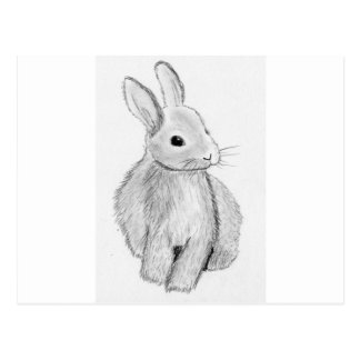Unique Hand Drawn Bunny Postcard
