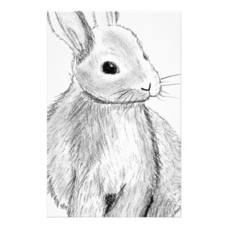 Unique Hand Drawn Bunny Stationery