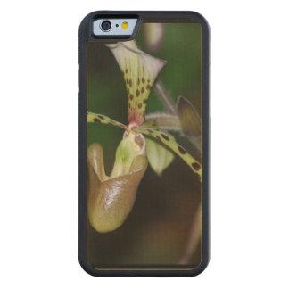 Unique Orchid Carved® Maple iPhone 6 Bumper Case