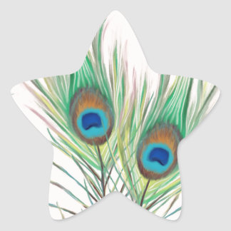 Unique Peacock Feathers Pattern Star Sticker