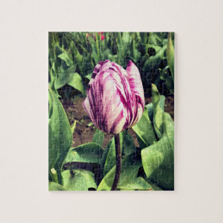 Unique Purple & White Stripe Tulip Jigsaw Puzzle