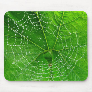 Unique Spiders Web Photo Designed Computer Mouse Pad