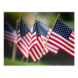 United States Flags Postcard
