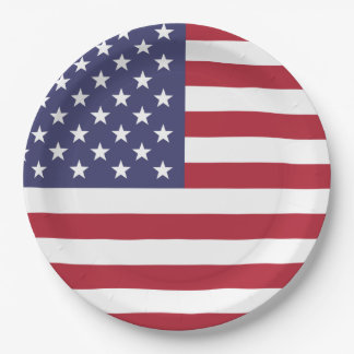 United States of America flag Paper Plate