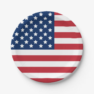 United States of America | Stars and Stripes Flag Paper Plate