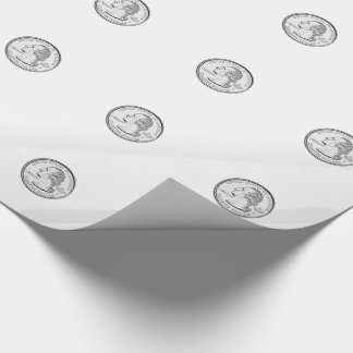 United States Quarter Coin Wrapping Paper